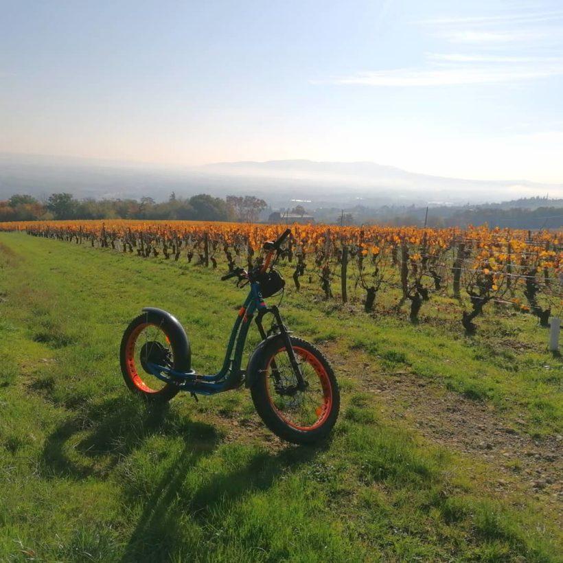 Aventure dans les vignes en E trott